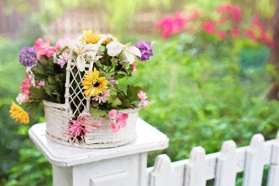 traillage jardin